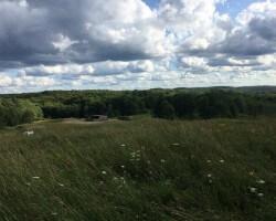 Western NY farm